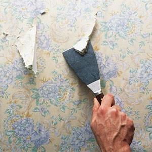 Снять обои с гипсокартона на стенах или потолке своими руками
